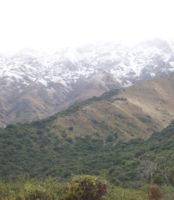 carpinteria-paisaje (12)